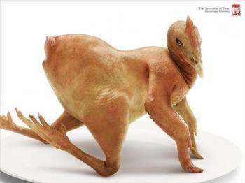 Sexy_chicken